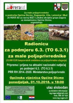 Radionica Dicmo 01.10.